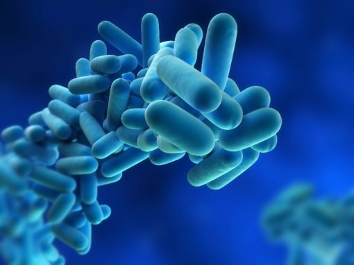 Analisi Legionella